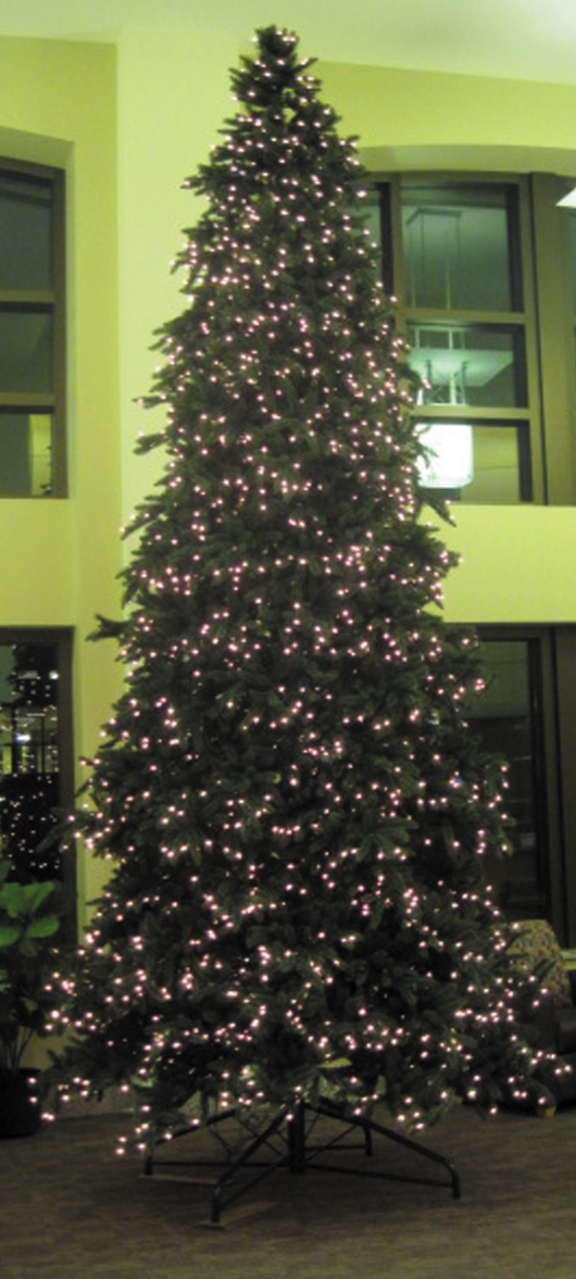 Photo by Sonja Tinjum. The new Christmas tree featured in the Knutson Campus Center was purchased by the Student Involvement Commission using their own funding.