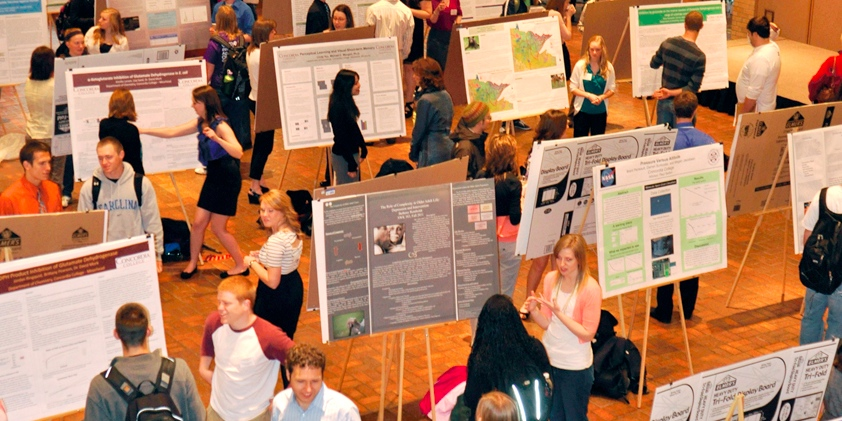 Student work highlighted at campus celebration
