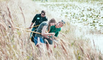 Students on the HILT trip were able to volunteer and help with various areas in the Florida Everglades over spring break. Photo submitted by Chase Body.