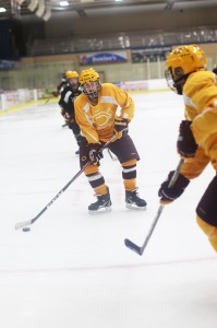 hockeyweb