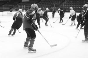 hockeyedit