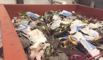 Vermicomposting worms its way into Bogs East, potentially green offices