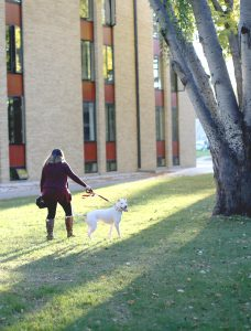 Michelle McNamara takes Ice for a walk through campus. Photo by Maddie Malat.