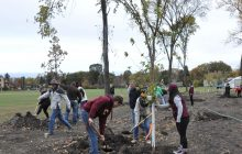 Students joined faculty and community members in planting trees on Oct. 14. Photo by Karissa Chouinard.